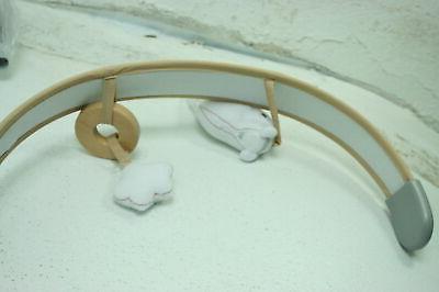 Ingenuity 11023-3-ES Boutique Collection Swing Rocker Bella Teddy